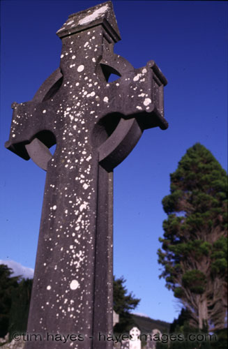 Celtic Cross and Tree