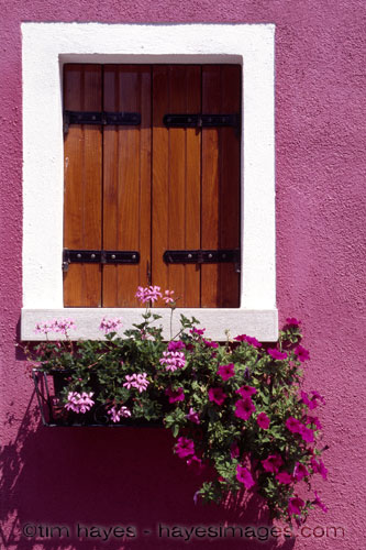Pink Burano Window